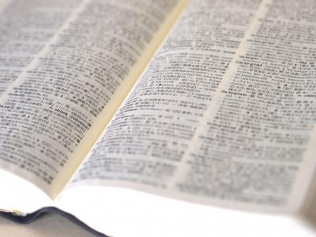 法律分野翻訳に求められる専門性と正確さ